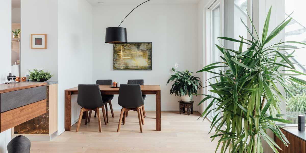 magnum Tisch mit lui Stühlen in Nussbaum von TEAM 7 München