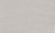 TEAM 7 cuir couleur blanc
