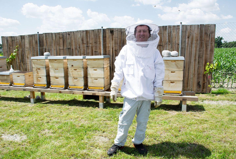 TEAM 7 Imker mit Bienenstöcken.
