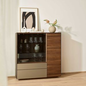 cubus pure display case in walnut by TEAM 7