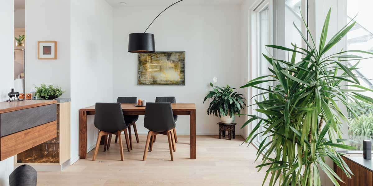magnum Tisch mit lui Stühlen in Nussbaum von TEAM 7 Stuttgart